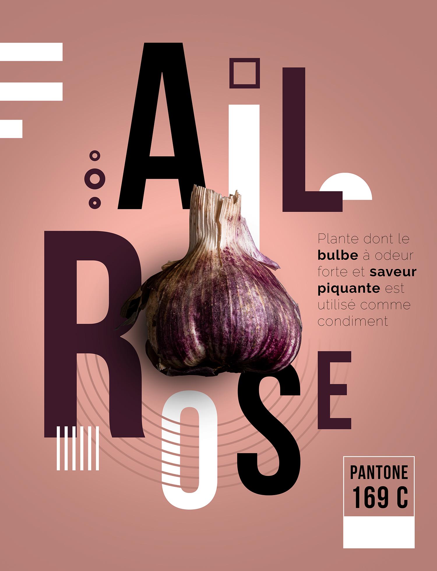L'ail rose photographié intégré dans son affiche graphique