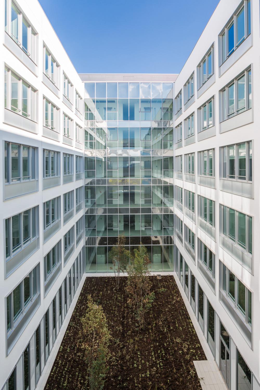 Jardin d'intérieur avec les bâtiments de bureau autour