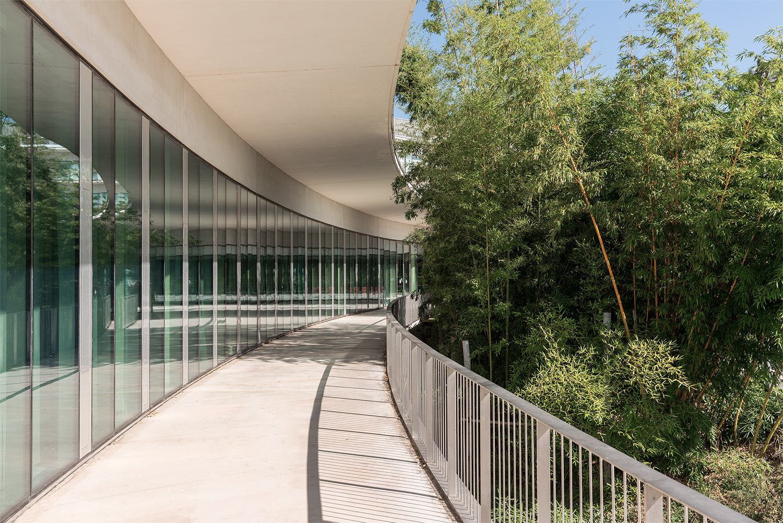 Zone de couloir extérieur de l'Oncopole de Toulouse, avec des bambous sur la droite